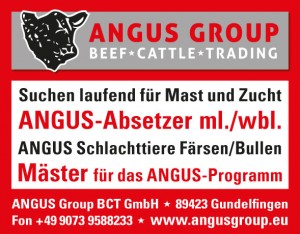 Anzeige Angus Group
