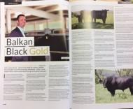 Balkan Black Gold