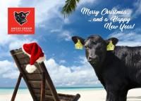 Weihnachten Postkarte AGDE