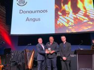 Gold, Silver and Bronze – Once again winner at the World Steak Challenge 2019 - Dublin