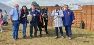 Angus Group judged The All Ireland Aberdeen Angus Champion
